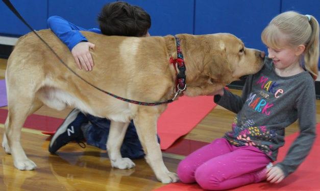 Students Enjoy Therapy Dog & Yoga